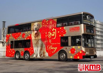 Year of Dog (Year 2006)
